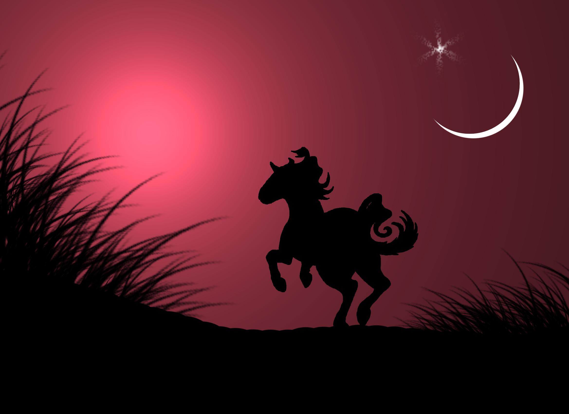 Horse Running At Sunset Rastelly