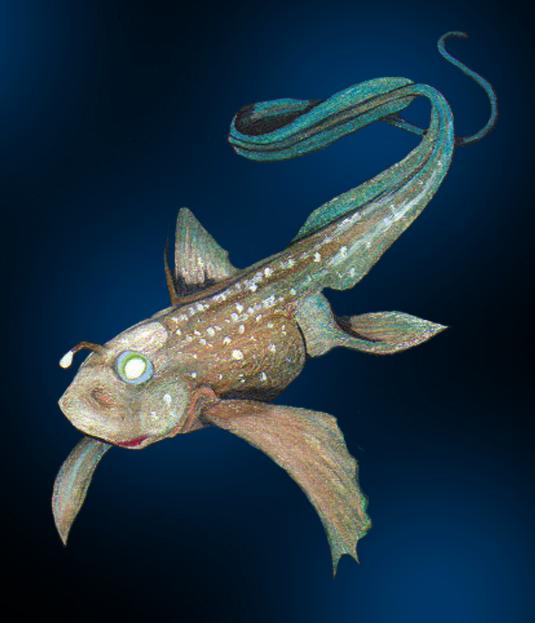Рыбы химеры картинки
