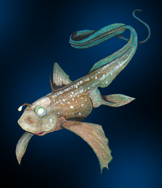 Weird and wonderful chimaera fish rastelly for Do fish make noise